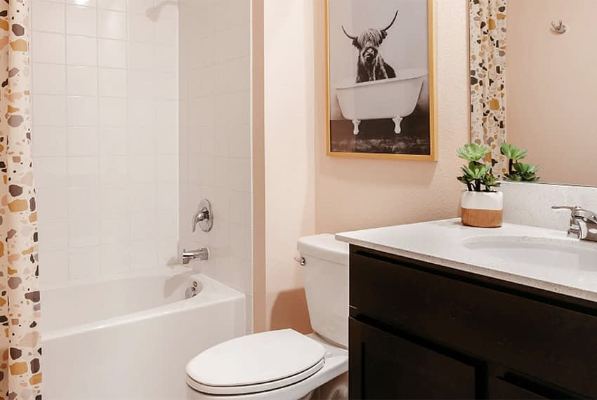 Janeway_Bathroom_2